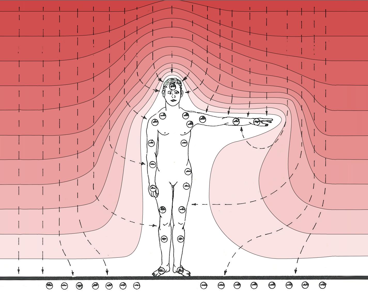 SfR 4 – 5  Körperscan und Störersuche